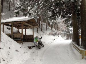 momoitouge_winter